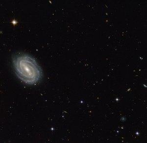 Tässä kuvassa näkyy kaunis kierteisgalaksi PGC 54493, joka sijaitsee Vesikäärmeen tähtikuviossa. Kuva: ESA Hubble.