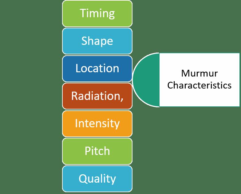 Characteristics of Heart Murmur