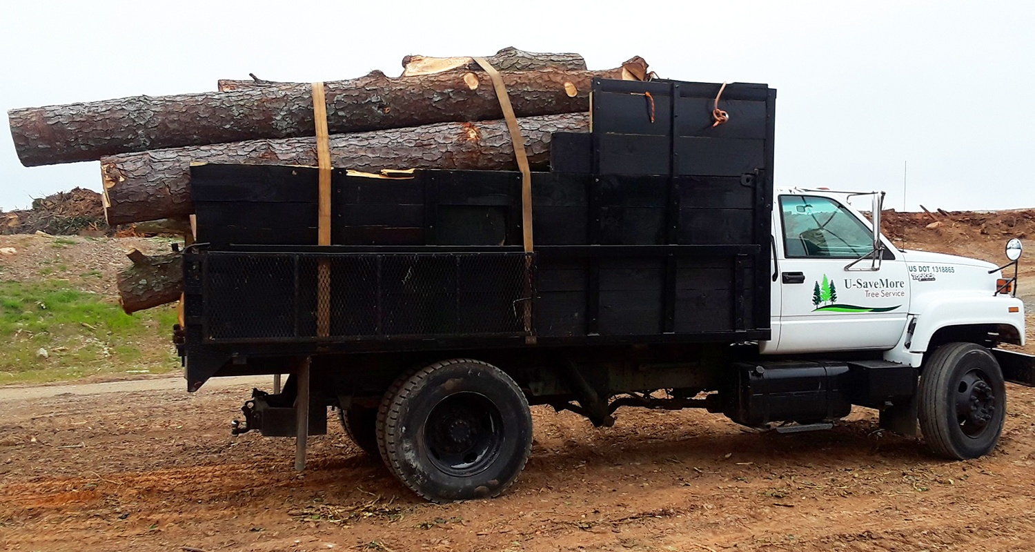 U-Savemore-tree-service-snellville-land-clearing-lot-clearing_3
