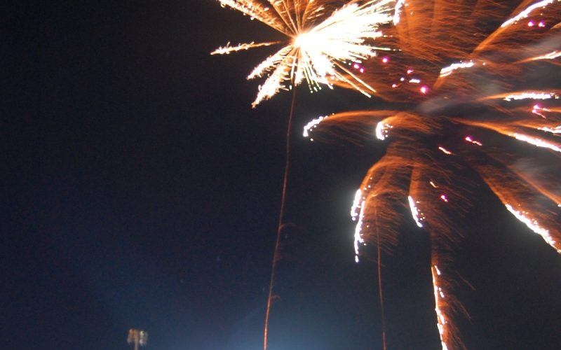 Fireworks Friday presented by XFINITY  Blackjack the Border Collie  Oakland University Night