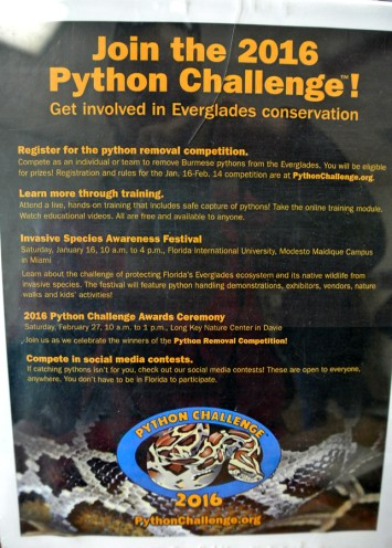 Join the 2016 Python Challenge_usproject2016.com