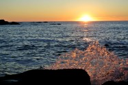Sunset Bay State Park 14
