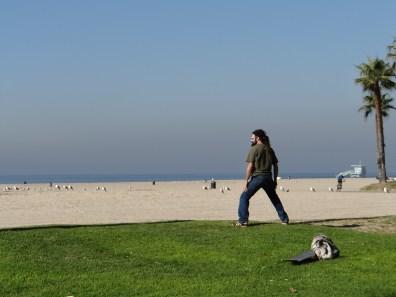 Los Angeles (18) Venice Beach