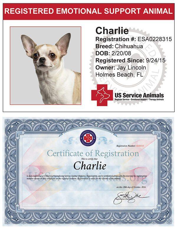 Emotional Support Animal Registration Guide - ESA ...
