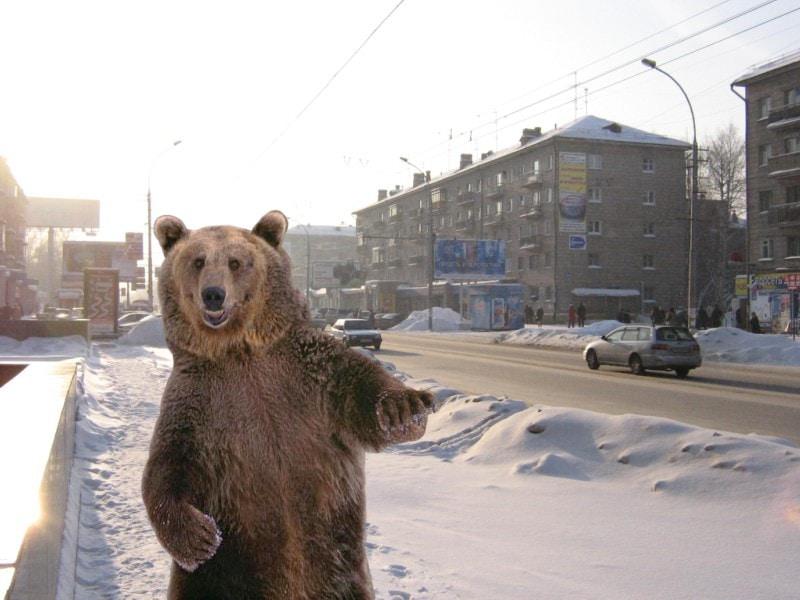 Тест по стереотипам российских городов