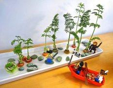 20140319__140322 erickson saucer garden-1