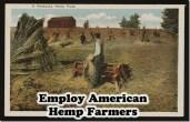 employ-American-Farmers-Hemp-farm_thumb