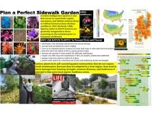 Plan a Perfect Sidewalk garden-all kids