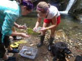"Meg and Megan collecting data with ""Osa"""