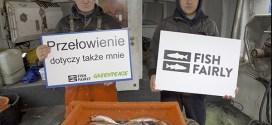 Przełowienie w Bałtyku będzie trwało nadal - ekolodzy krytykują Komisję Europejską - ustka24.info
