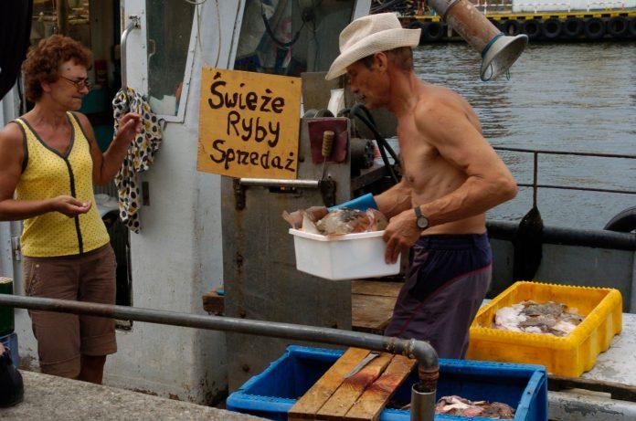 W usteckim porcie powstanie targ rybny. Rybę kupimy prosto z kutra - ustka24.info