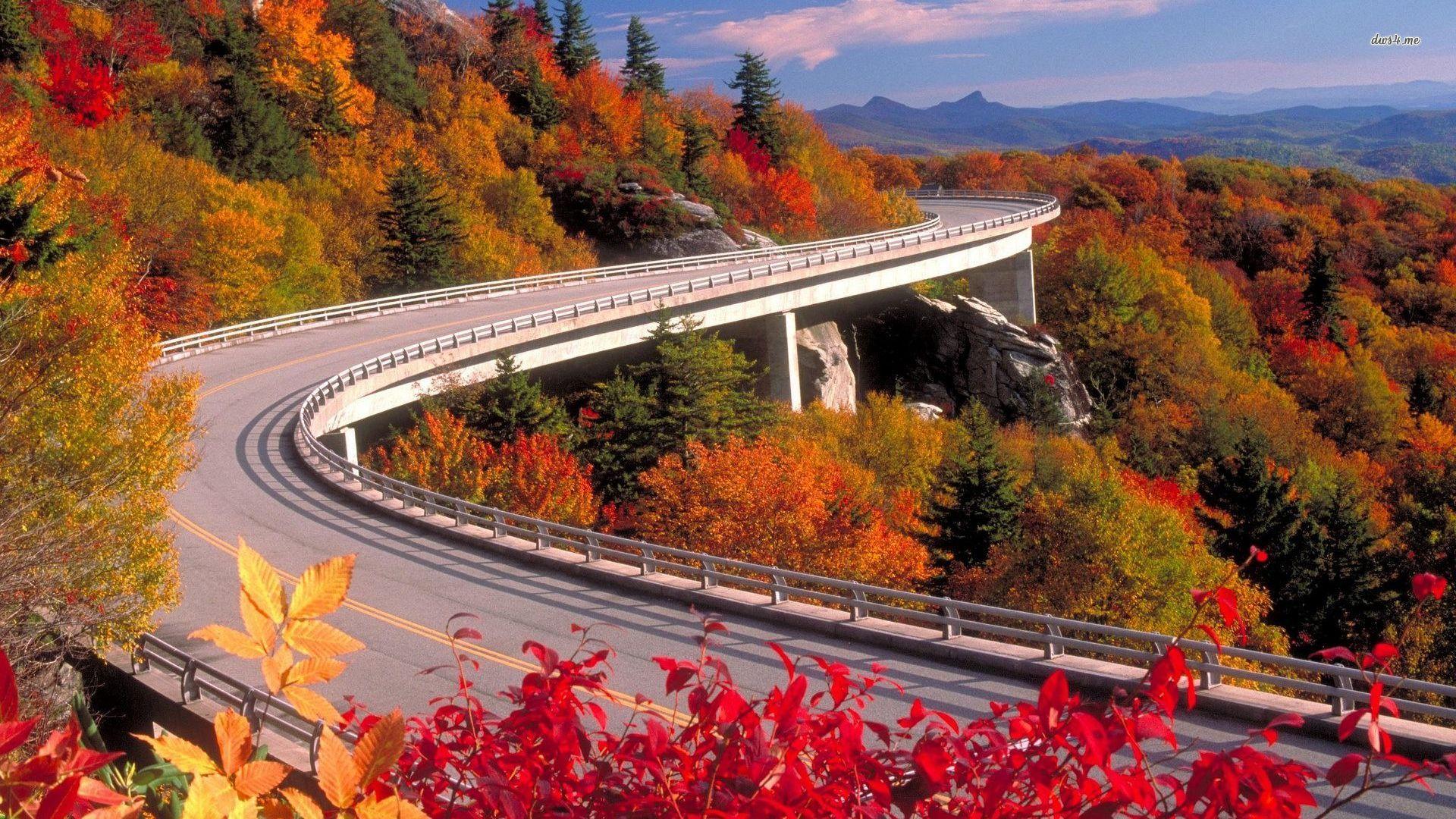 Looking Glass Falls Wallpaper Carolina Del Norte Un Estado De Postal Us Traveler