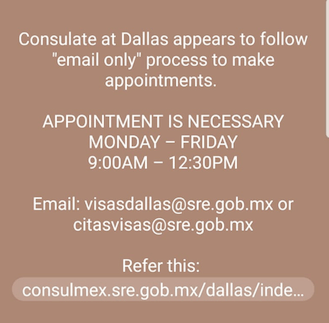 Mexican Visitors Visa Details - Dallas Texas