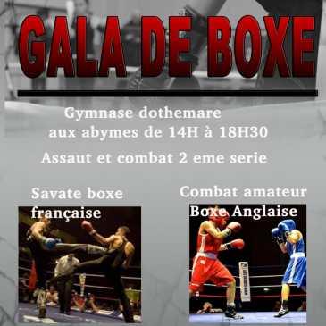 Boxe Anglaise: Elias bouguerba et Nicolas urie, Gala en Guadeloupe ce Weed-end