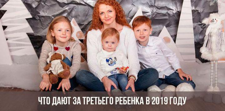 vyplaty-za-tretego-rebenka-v-2019-godu