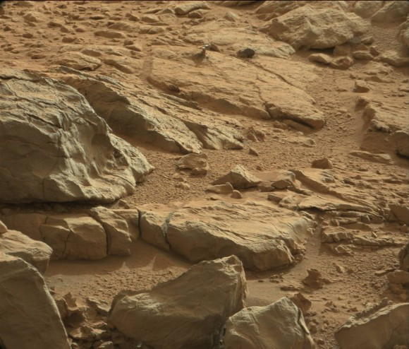 A shiny-looking Martian rock is visible in this image taken by NASA's Mars rover Curiosity's Mast Camera (Mastcam) during the mission's 173rd Martian day, or sol (Jan. 30, 2013). Image Credit: NASA/JPL-Caltech/Malin Space Science Systems.