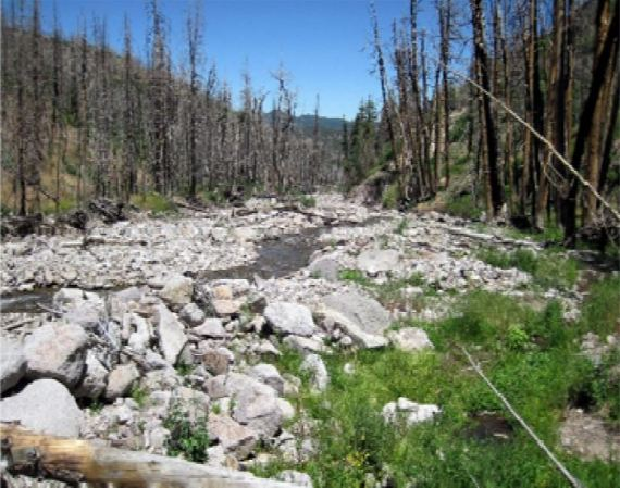 Figure 2. Channel aggradation and vegetation loss due to the 2010 Twitchell Fire