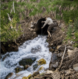 Tributary culvert that dozens of PIT - tagged fluvial cutthroat trout have ascended during spring spawning.