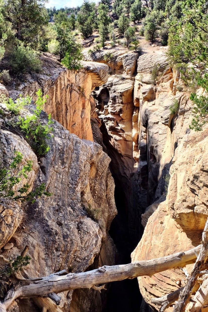 Bull Valley Gorge : valley, gorge, Death, Valley, Gorge