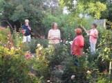Yoneda garden tour 03