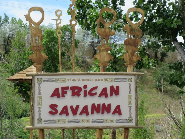 The African Savanna exhibit is now open at Hogle Zoo.