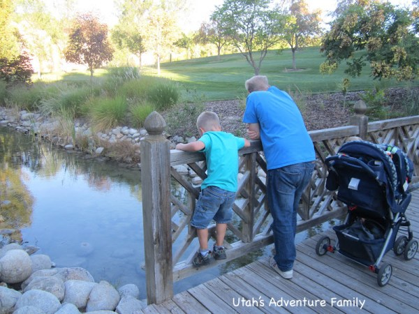 The tiny minnows were captivating for a 6 year old (and his dad)