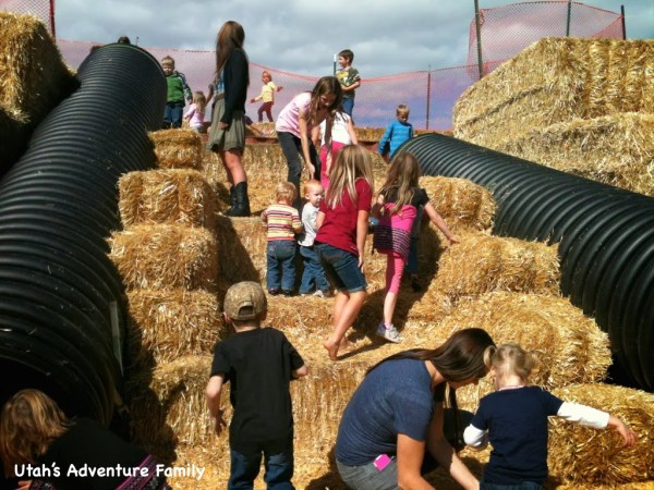 You had to climb the straw bales to go down the slides!