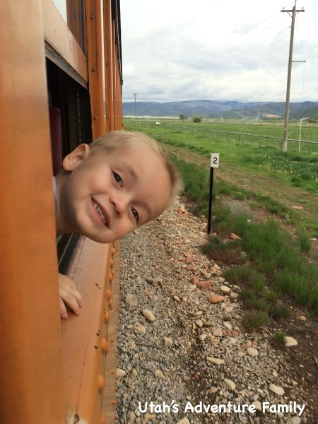 Our youngest loved sticking his head out the window for a better look!