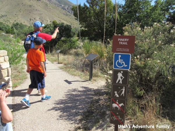 Guadalupe Mountains National Park 5