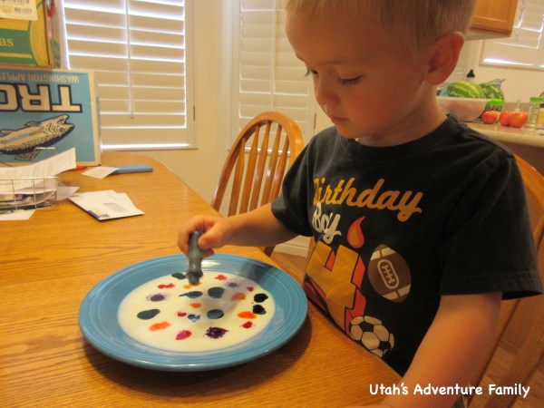 Fill the bottom of the plate with milk. Have your child drop in different colors with the food coloring. Then add one drop of dish soap to the middle of the plate, and watch the magic milk.