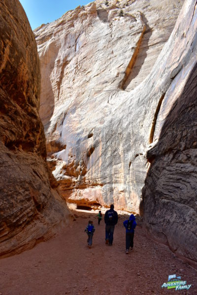 Grand Wash Capitol Reef : grand, capitol, Grand, Capitol, Utah's, Adventure, Family
