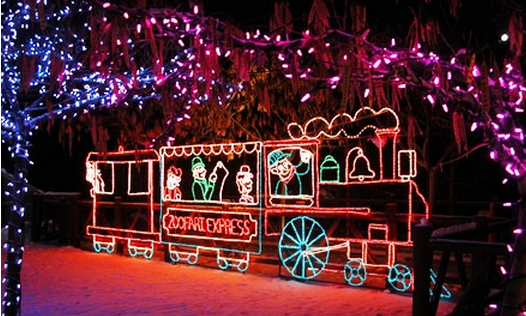 Zoo Lights Utah Discount Coupons