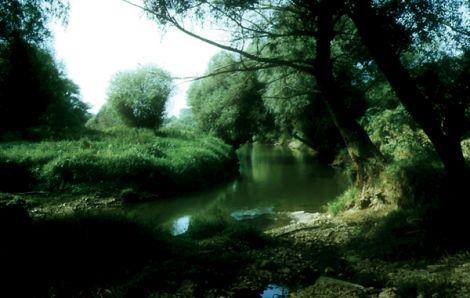 Duna Ipoly Nemzeti Park Magyarorszg Duna Ipoly