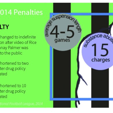 Notable NFL Penalties