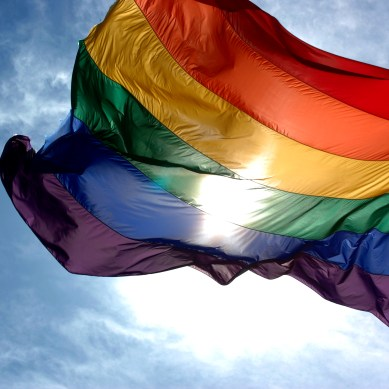 SG adopts LGBT/GSRM resolution