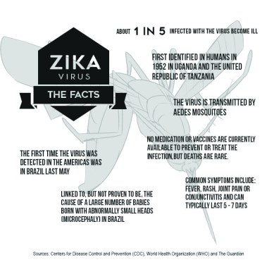 Zika Virus: The Facts