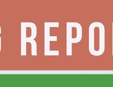 SG Report: November 14th