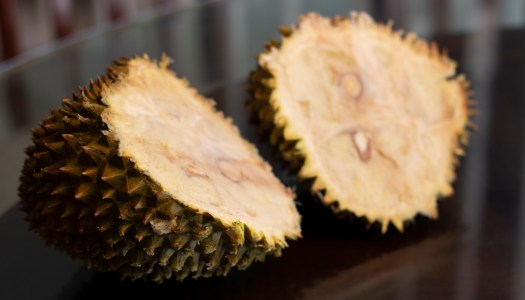Durian: The world's smelliest fruit