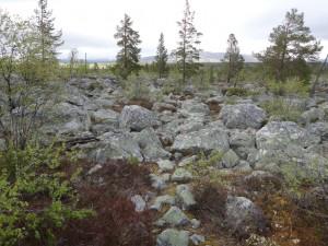 Det röda på stenarna är ledmarkeringar