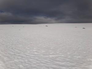 En stort snöfält