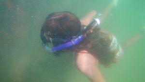 Honors student snorkeling at Egmont Key