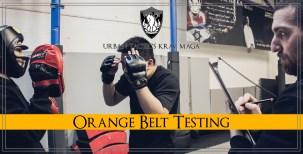 Orange Belt Testing
