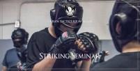 Striking Seminar