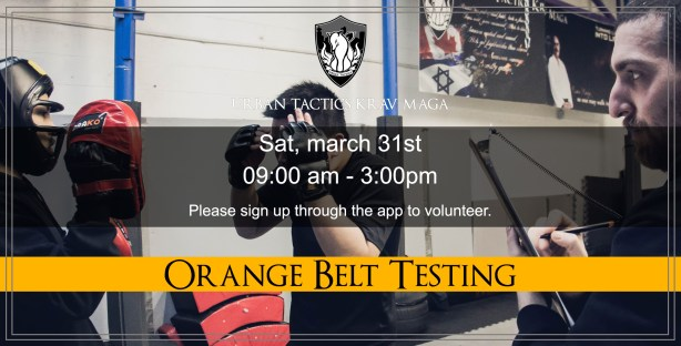 March 31st Orange Belt Test