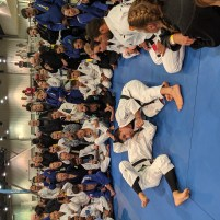 The Mendes Bros showing their smooth BJJ