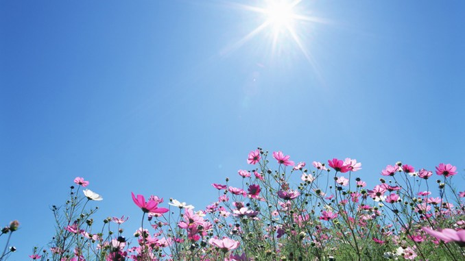 PHOTO sunshine