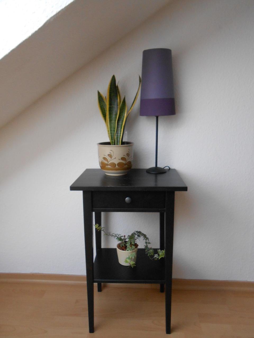 Pflanzen Im Schlafzimmer: So Hast Du Einen Gesunden Schlaf   Utopia.De