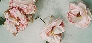 Blumenstrau Trocknen Aber Wie Rezepte