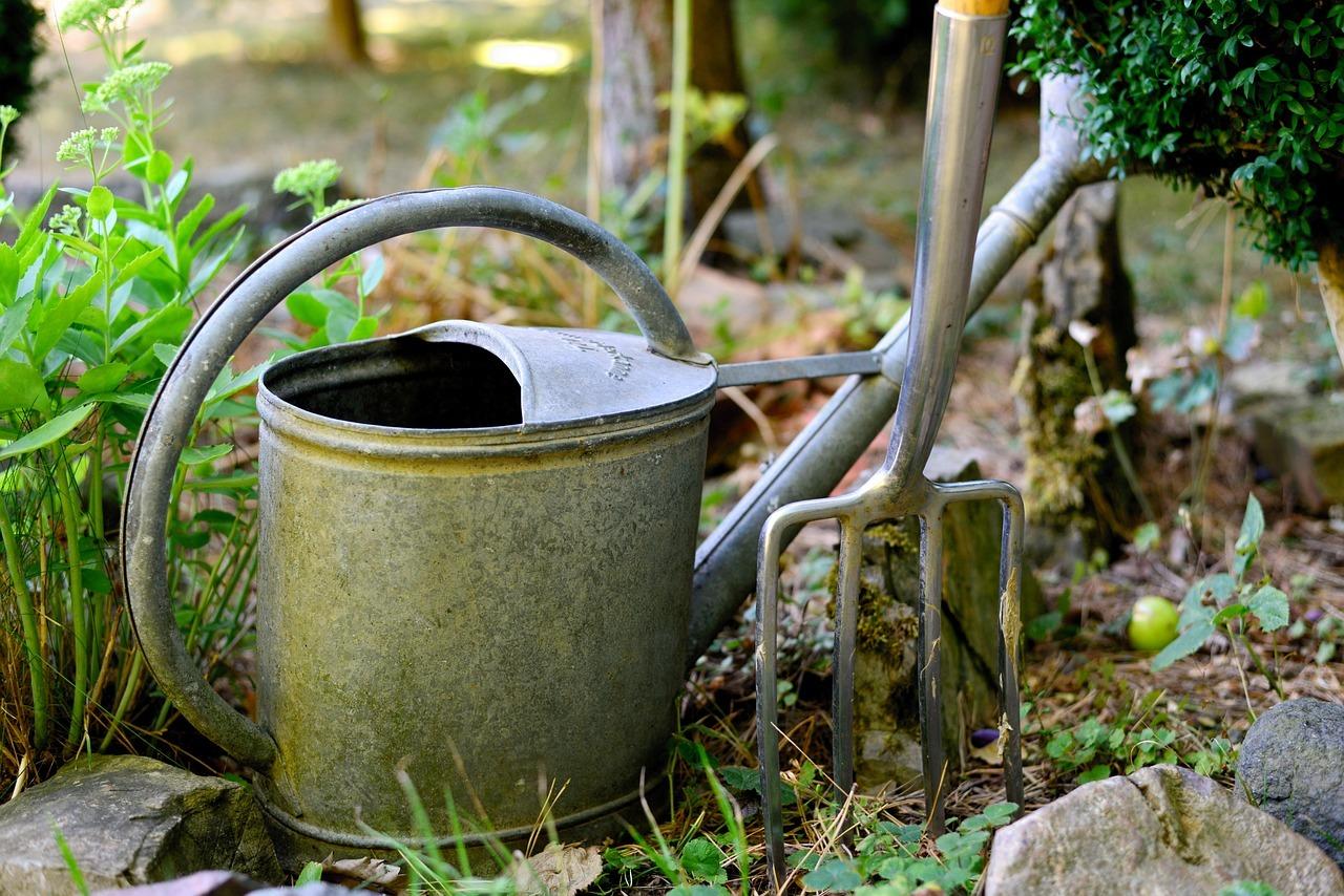 Regenwassernutzung: So Sparst Du Kostbares Trinkwasser - Utopia.De