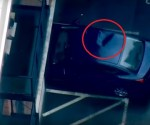 Toddler survives fall after landing on strangers car roof